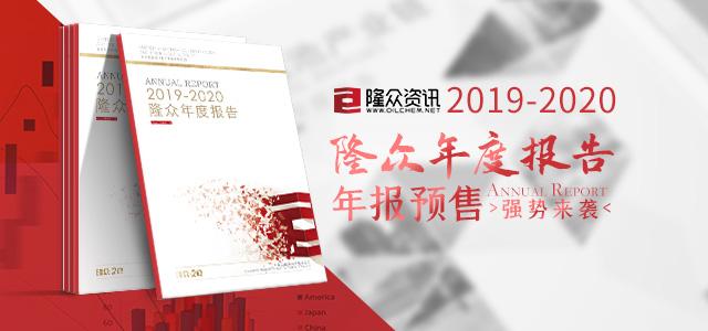 2019年度報告預售